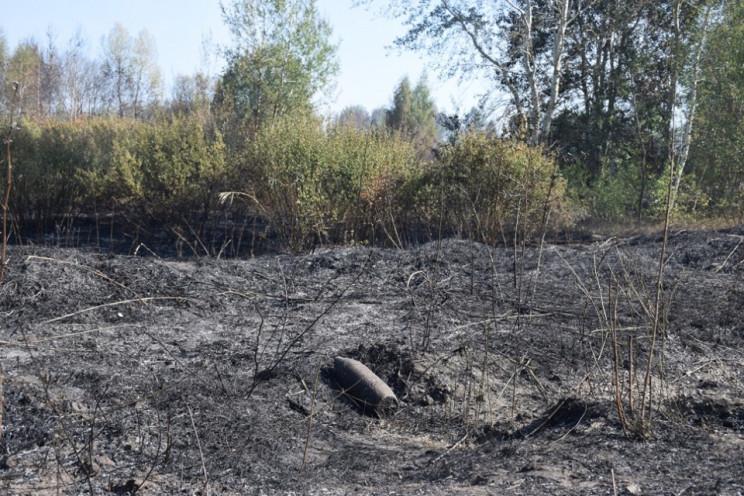 Пожар на артполигоне под Харьковом: Площ…