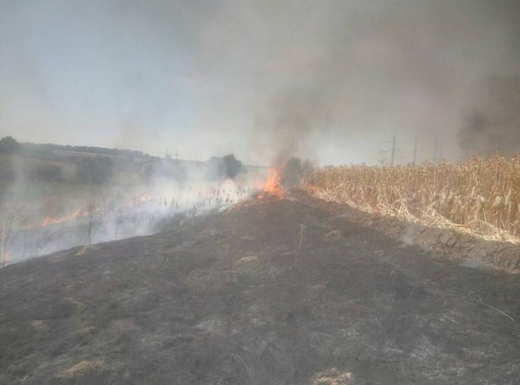 Неподалік Полтави у Мачухах згоріло поле…