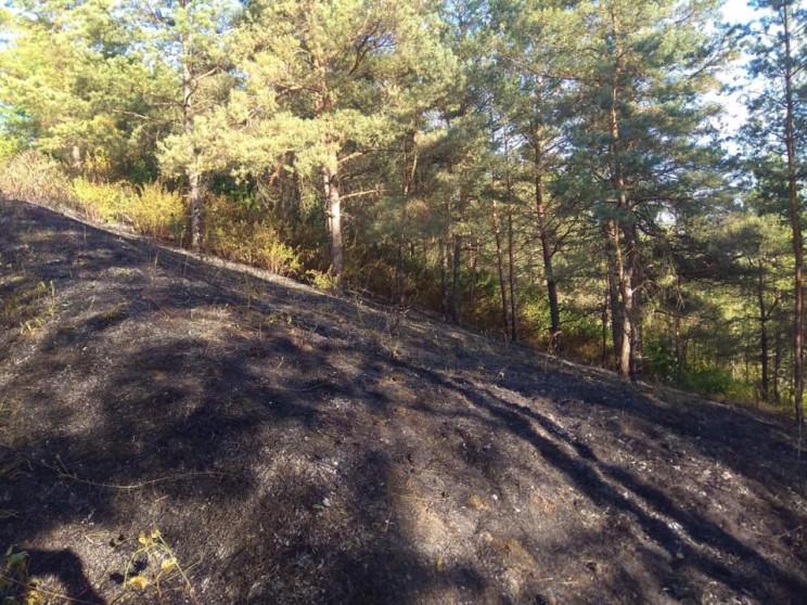 Третю добу гасять пожежу лісу в заказник…