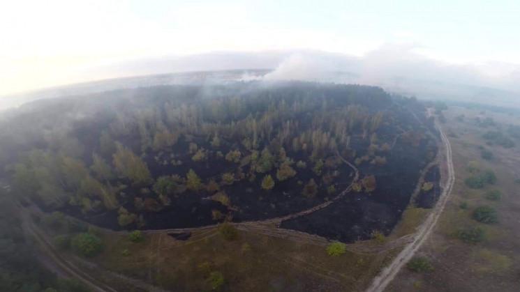 Рятувальники Полтавщини загасили масштаб…