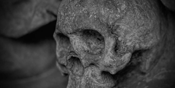 На Кубани обнаружили останки двух десятк…