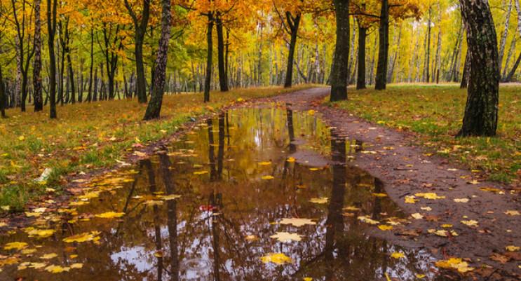 Холодний дощ і навіть з грозою прогнозую…
