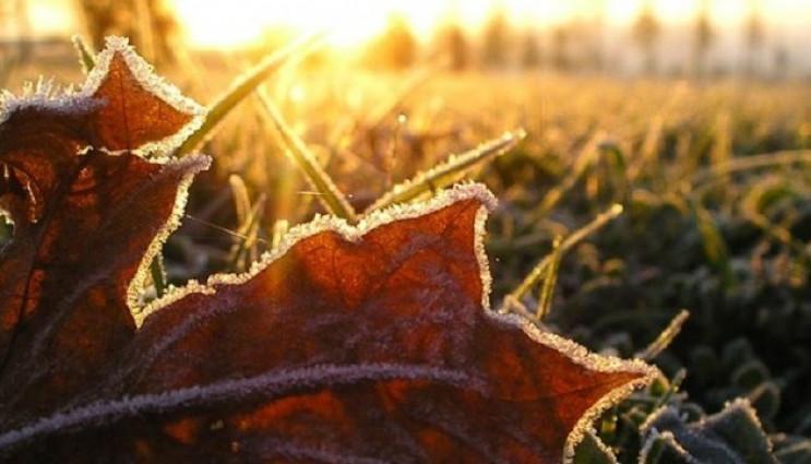 Ввечері в Києві похолодає до +7°C, завтр…