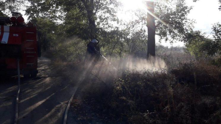 У Кременчуці на Полтавщині вигоріло півг…