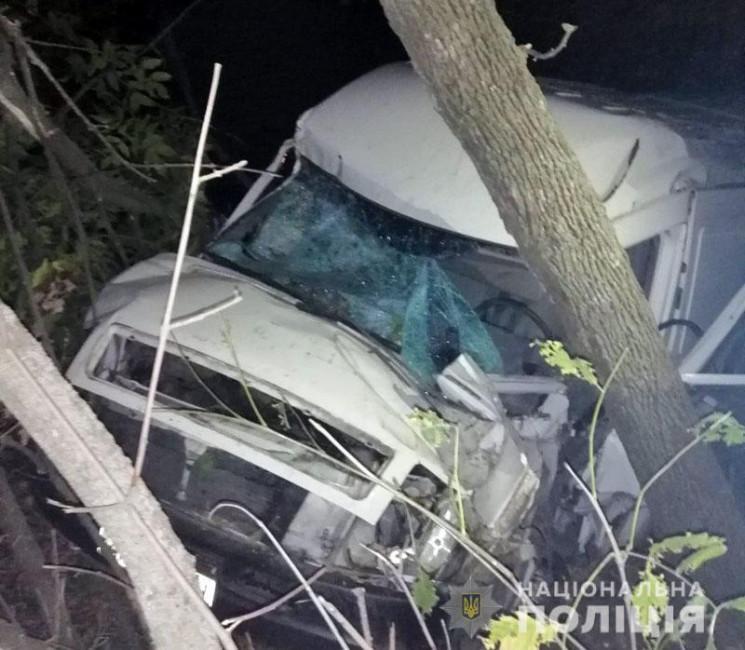 На Донеччині вантажівка насмерть збила п…
