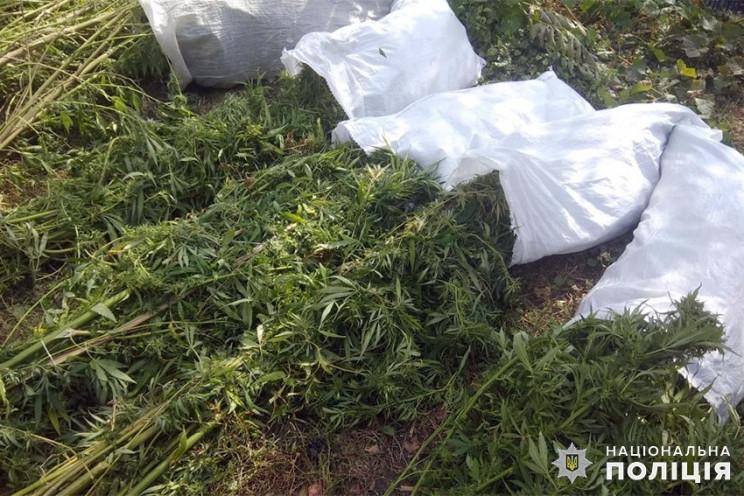 Мешки наркотиков и полсотни боеприпасов…