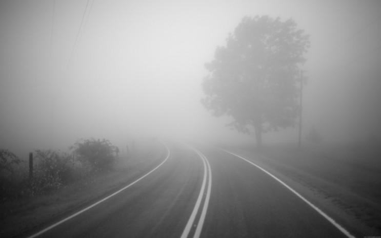 Миколаїв накрило щільним туманом…
