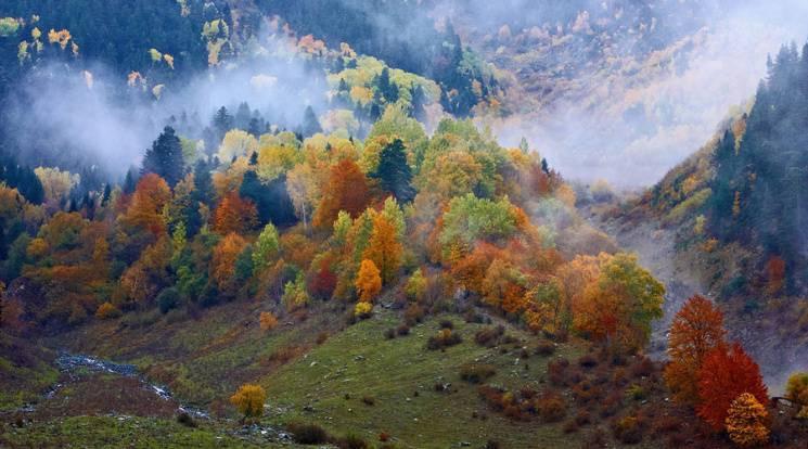 Закарпаття: Прогноз погоди на 13 жовтня…