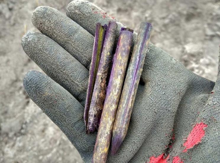 На Житомирщині знайшли останки загиблого…