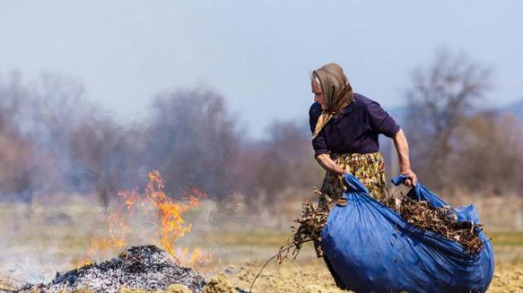 На Бродівщині під час спалювання сухої т…
