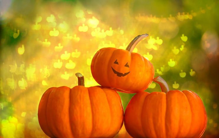 Мюзикли, дегустація віскі чи Halloween:…