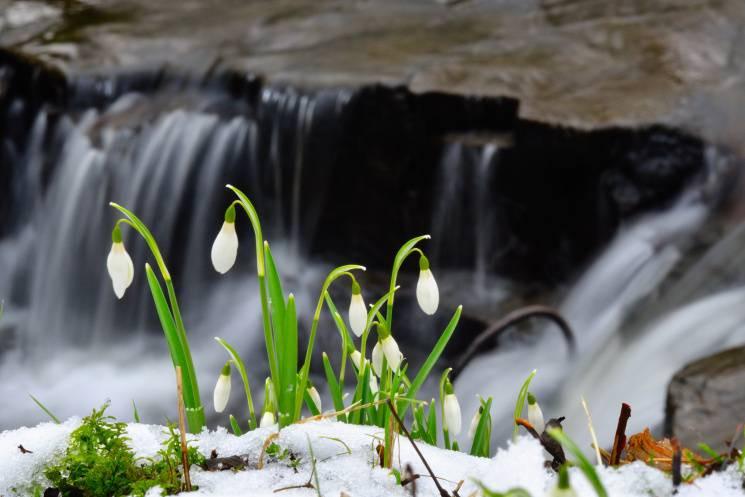 Чому 23 березня вода – особлива, а грішн…