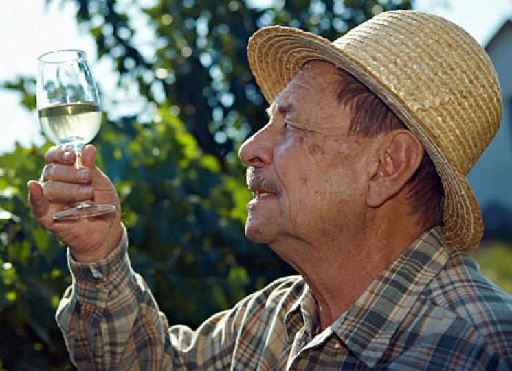 На Запоріжжі відбудеться фестиваль вина…