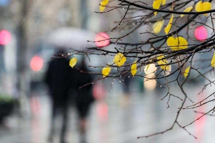 Завтра в Киеве холодно, на выходных вете…