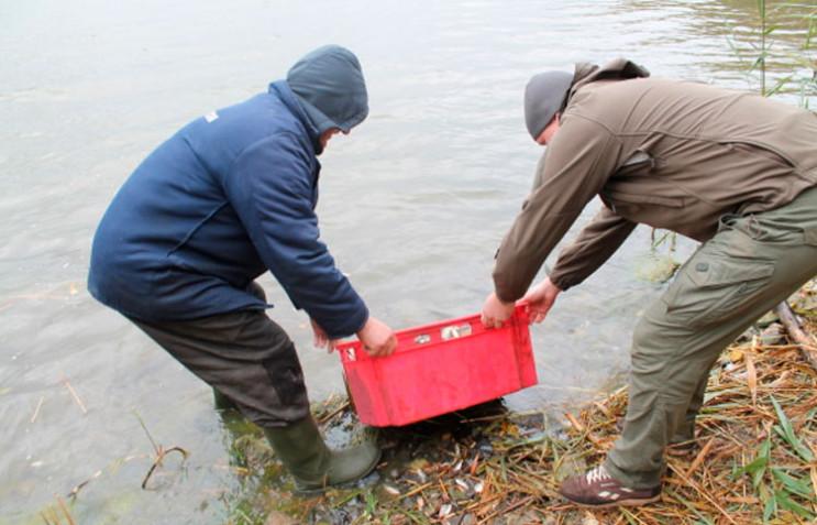 Три тони риби запустили в охолоджувач Хм…