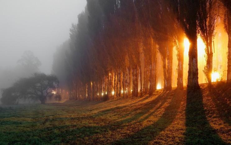 Погода на вихідні в Києві: Осінні тумани…
