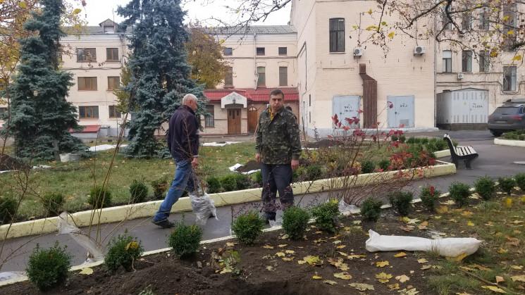 Поблизу ОДА у Кропивницькому висадили ре…