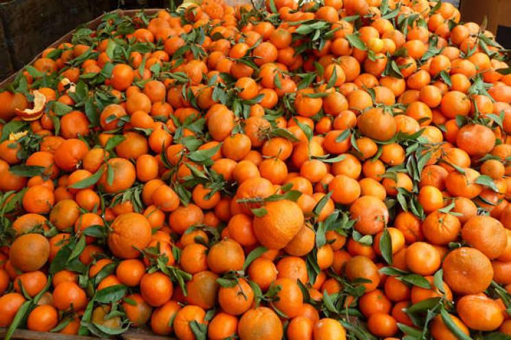 Лайфхак задарма: Як вибирати мандарини…