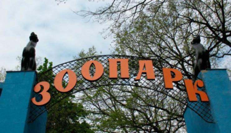 В Харькове горит городской зоопарк, где…