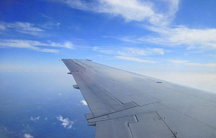 Пілот літака в Анапу помер після екстрен…