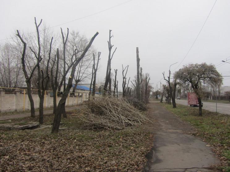 ТОП-5 жахів благоустрою Сіверськодонецьк…
