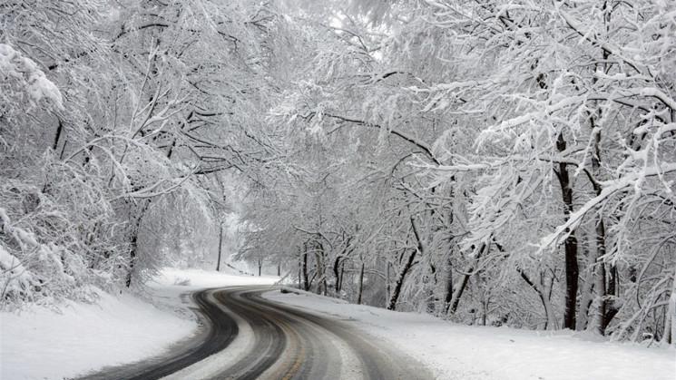 На Львівщині випав перший зимовий сніг (…