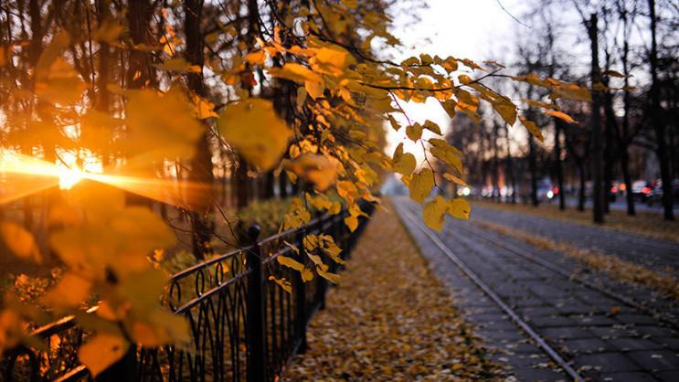 Листопад у Києві встановив п'ять темпера…