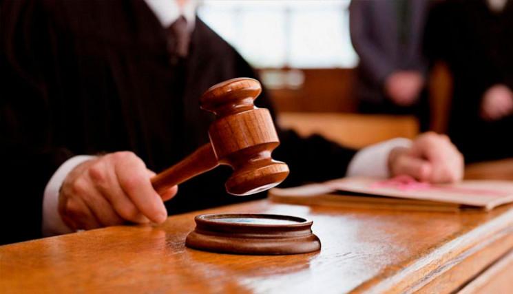 Водія з Житомирської області засудили за…