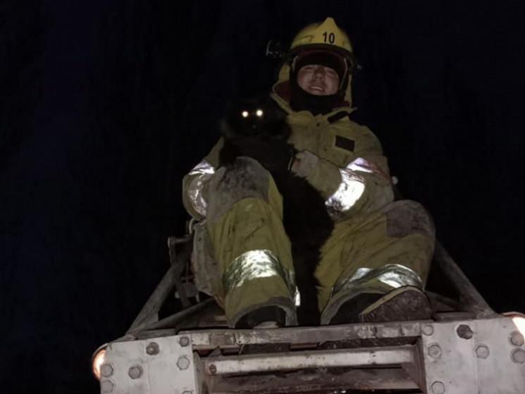 Рятувальна операція на Запоріжжі: Якого…