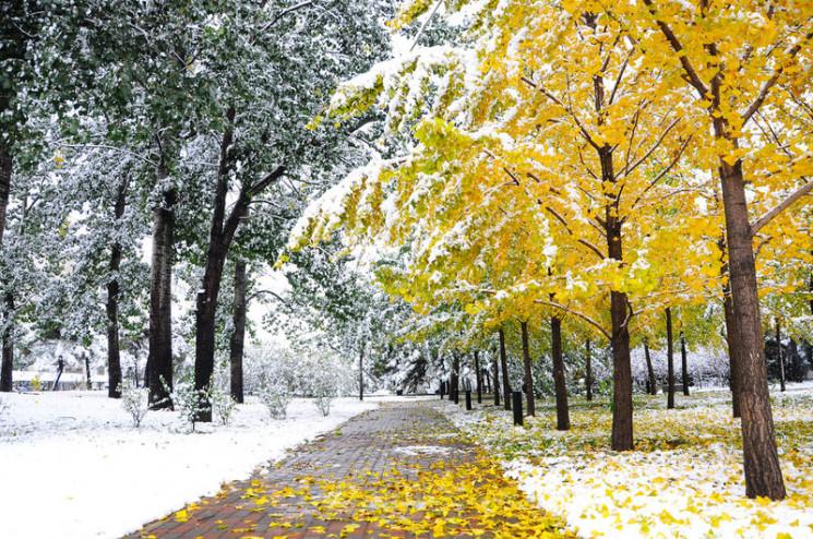 П'ять температурних рекордів: У Києві пі…