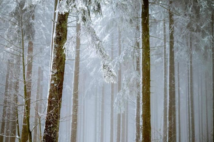Закарпаття: Прогноз погоди на 15 грудня…