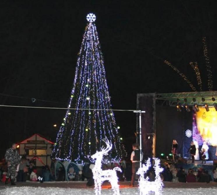 В Днепре установят новогоднюю елку с сер…