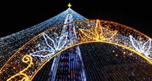 Главные елки Украины: Где искать красави…
