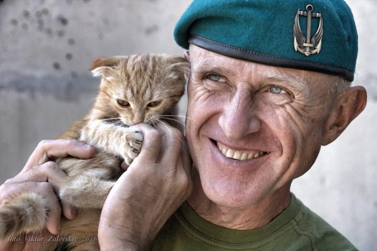 Коти на війні: Найкраще за 2019 рік…