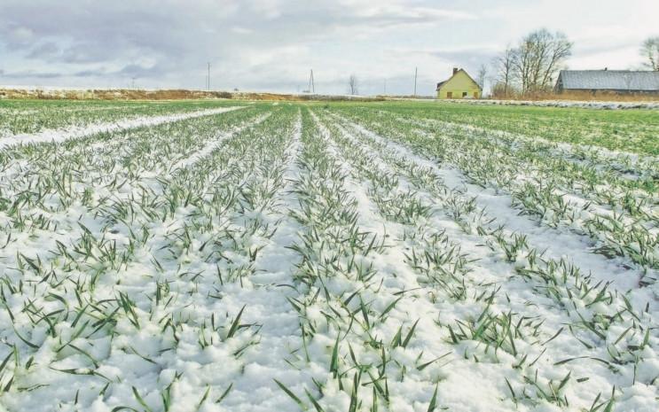 Під цьогорічний урожай на Хмельниччині п…