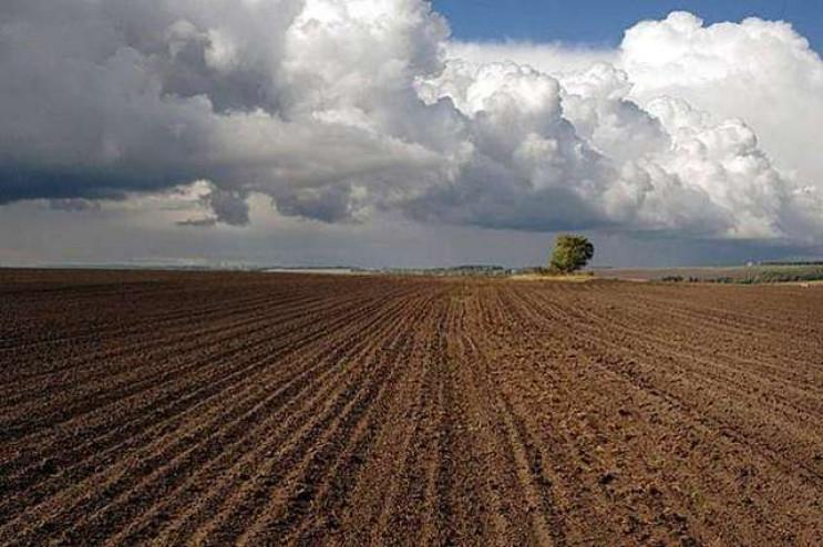 Майже півтори тисячі земельних ділянок о…
