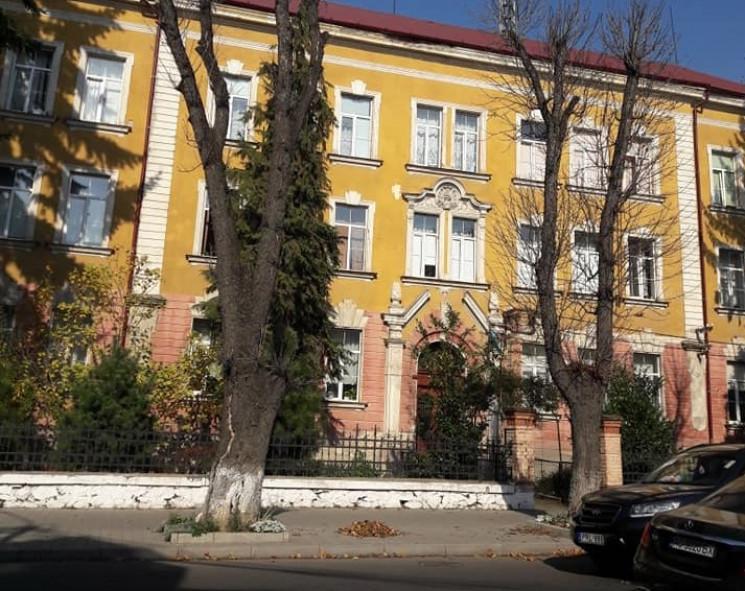 У центрі Ужгорода обрізатимуть дерева: Р…