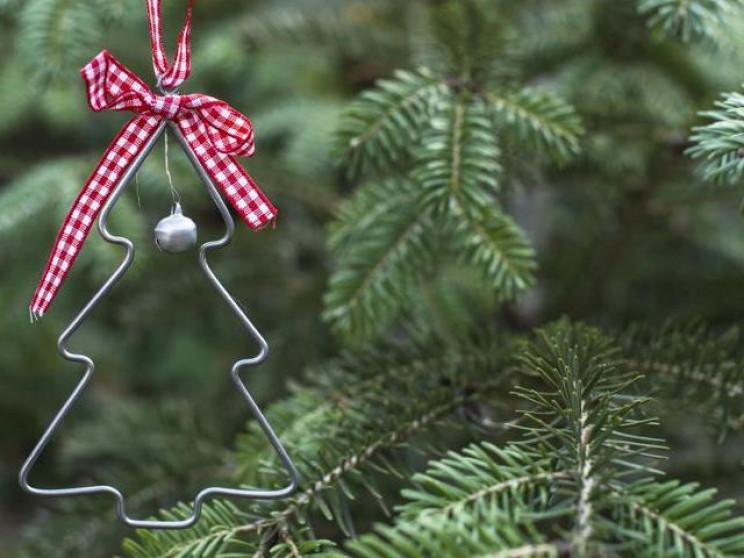У Краснодарі розпочався демонтаж новоріч…