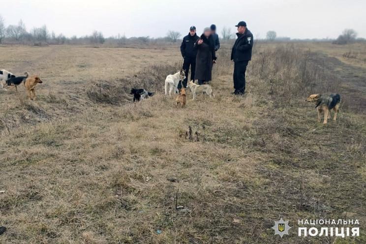 У Старокостянтинові застрелили собаку з…