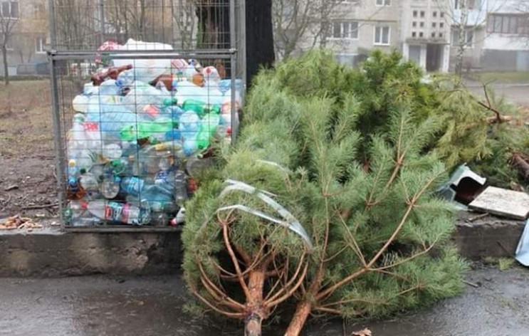 Кропивницкие новогодние елки собираются…