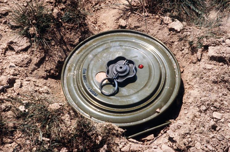 Біля Бродів знешкодили протитанкові міни…