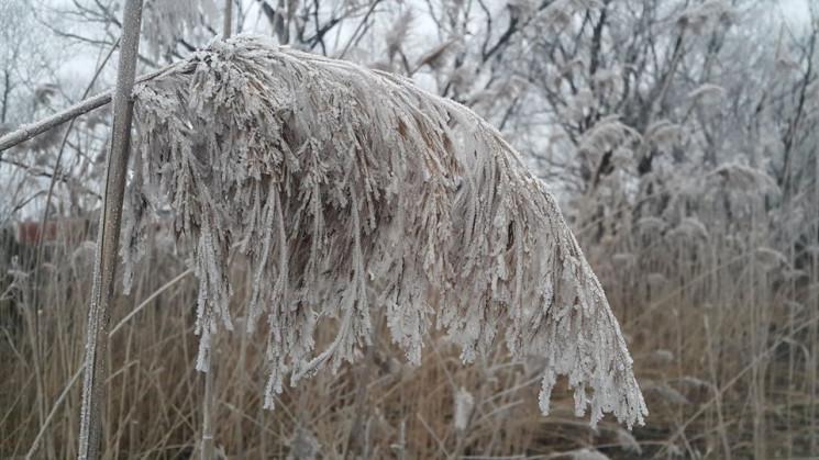 Дощ з мокрим снігом обіцяють на Хмельнич…