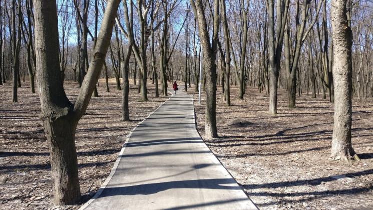 У столичному Сирецькому парку невідомий…