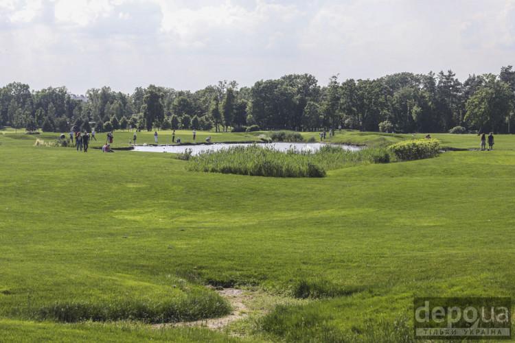 Карсиве поле у Межигір'ї