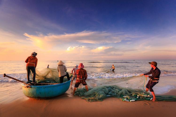 рибалки витягують улов